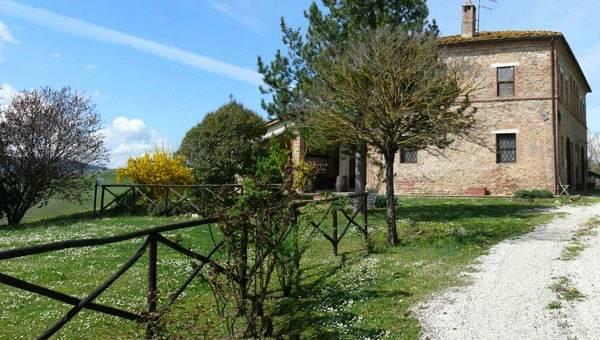 Vendita Azienda Agricola in Campagna Senese - Betti Immobiliare Toscana Rif 1591