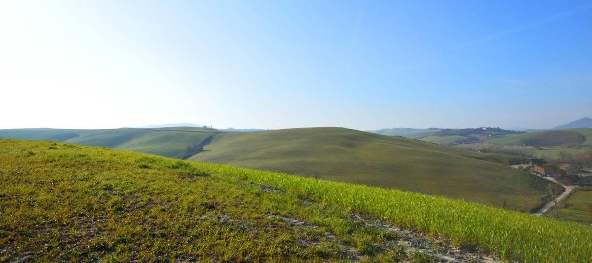 Vendita Fienile Campagna Pisana RIF:2076 - Agenzia Immobiliare Betti Poggibonsi Siena Toscana (1)