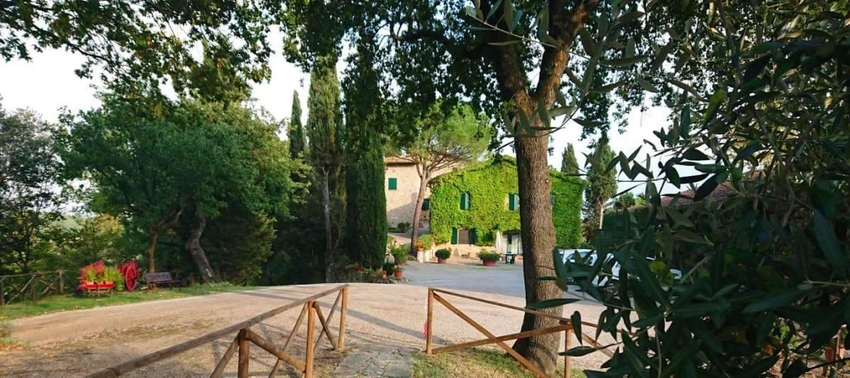 Vendita Azienda Agricola Campagna Senese RIF:2178 - Agenzia Immobiliare Betti Poggibonsi Siena Toscana (0)