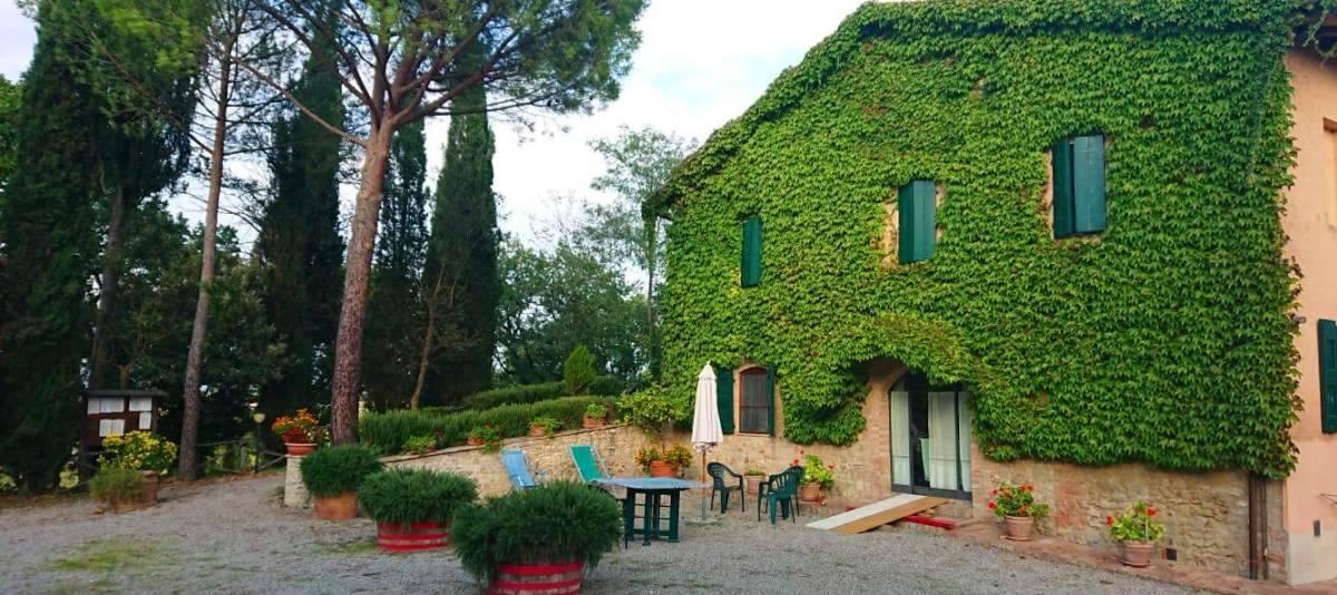 Vendita Azienda Agricola Campagna Senese RIF:2178 - Agenzia Immobiliare Betti Poggibonsi Siena Toscana (1)