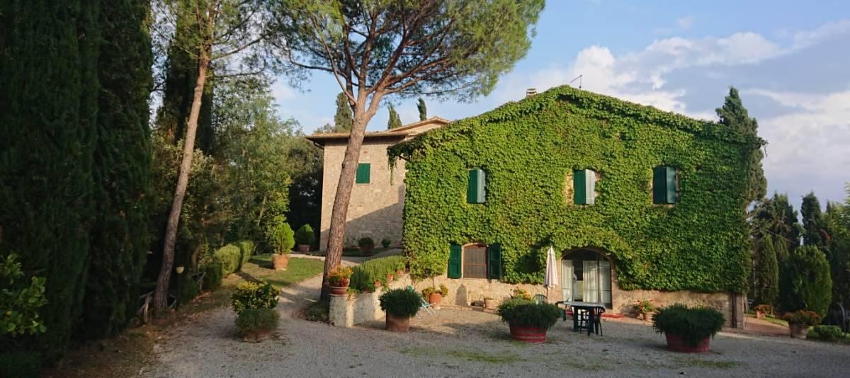Vendita Azienda Agricola Campagna Senese RIF:2178 - Agenzia Immobiliare Betti Poggibonsi Siena Toscana (2)