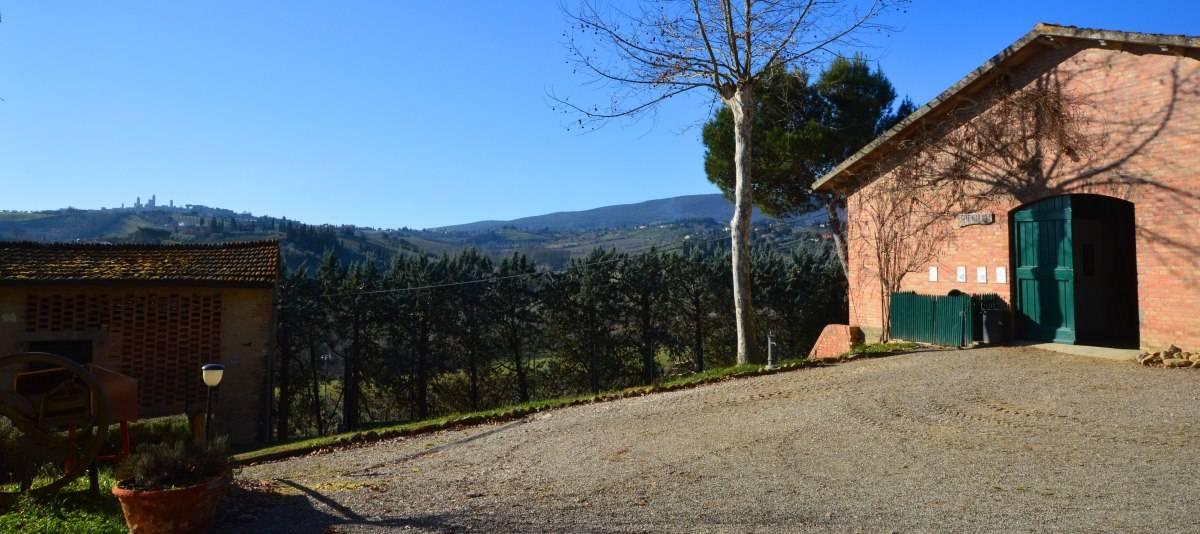 Vendita Azienda Agricola Campagna Senese RIF:2178 - Agenzia Immobiliare Betti Poggibonsi Siena Toscana (4)